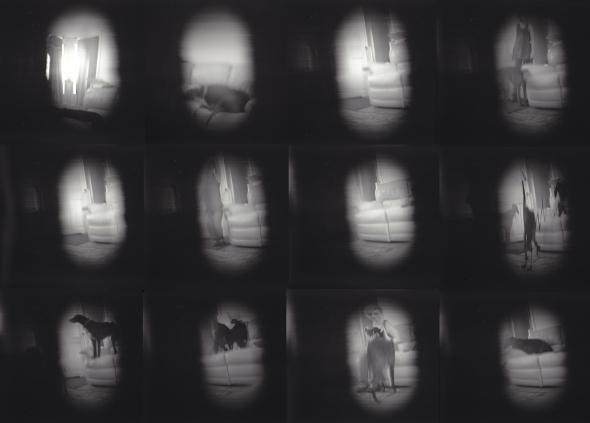 scannercamera